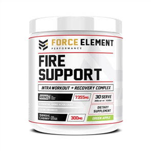 FORCE ELEMENT PERFORMANCE FIRE SUPPORT